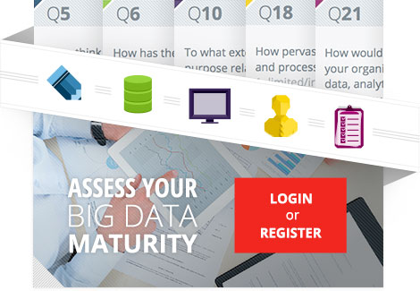 Assess Your Big Data Maturity: Login or Register